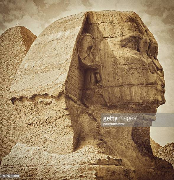 the sphinx - the sphinx stock pictures, royalty-free photos & images