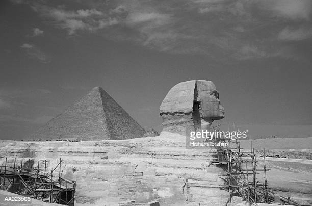 The Sphinx with Scaffolding and Great Pyramid