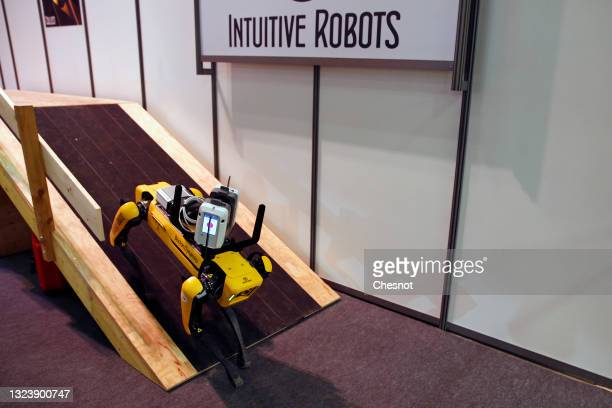 The Spot robot-dog from the start-up Intuitive Robots is on display during the 5th edition of the Viva Technology show at Parc des Expositions Porte...