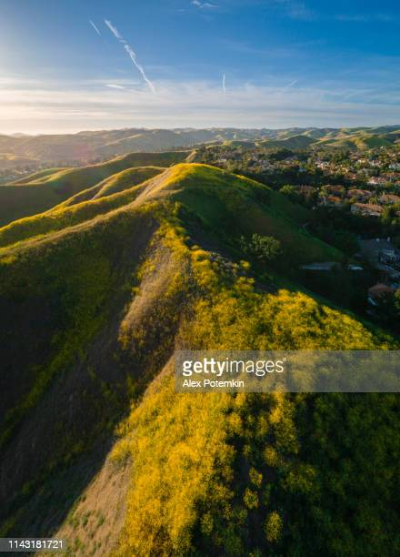 the spring bloom in the hills of santa monica mountains, california, usa. calabasas city in the backdrops. aerial high-resolution vertical stitched panorama. - los angeles mountains stock pictures, royalty-free photos & images