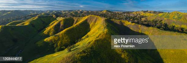 the spring bloom on the hills of santa monica mountains, california, usa. aerial extra-wide stitched panorama. - calabasas stock pictures, royalty-free photos & images