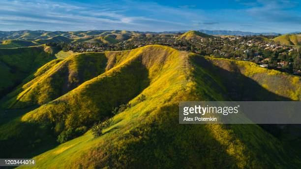 the spring bloom on the hills of santa monica mountains nearby calabasas, los angeles county, california, usa. aerial photo. - los angeles mountains stock pictures, royalty-free photos & images