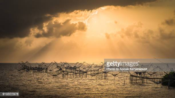 The square dip nets in the Talay Noi lake, Phatthalung province, Thailand.