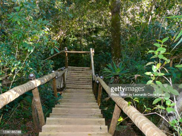 the stairs - leonardo costa farias stock pictures, royalty-free photos & images