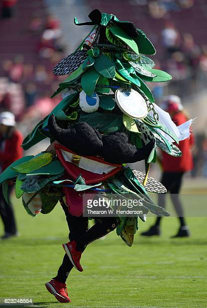 The Stanford Cardinal mascot The Stanford Tree performs prior to the start of an NCAA football game between the Oregon State Beavers and Stanford...