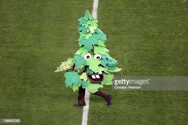 The Stanford Cardinal mascot tree performs against the Oklahoma State Cowboys during the Tostitos Fiesta Bowl on January 2 2012 at University of...
