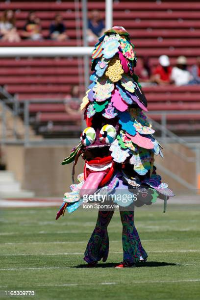 The Stanford Tree entertains the crowd before the game between the Northwestern Wildcats and Stanford Cardinal on August 31 2019 at Stanford Stadium...