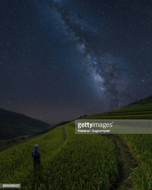 The Starry Rice Terrace
