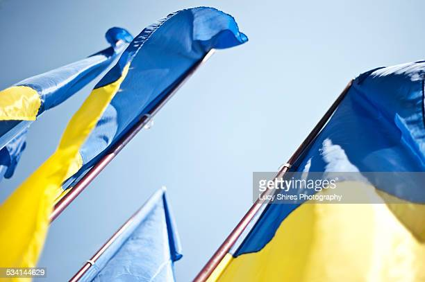 the state flag of ukraine on independence day. - lucy shires stock pictures, royalty-free photos & images