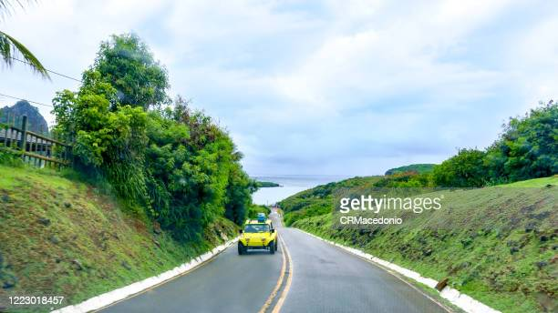 the state/federal highway crosses the main island of noronha and ends at sueste bay  an excellent option to contemplate marine life. - crmacedonio stock pictures, royalty-free photos & images