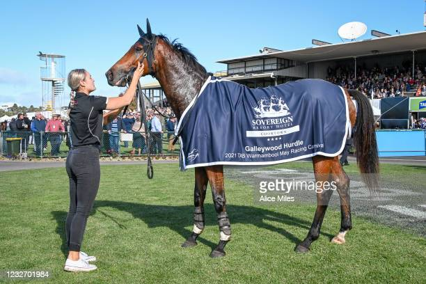 The Statesman after winning the Sovereign Resort Galleywood Hurdle at Warrnambool Racecourse on May 05, 2021 in Warrnambool, Australia.