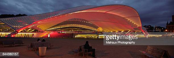 The station of Guillemins in Liège at night
