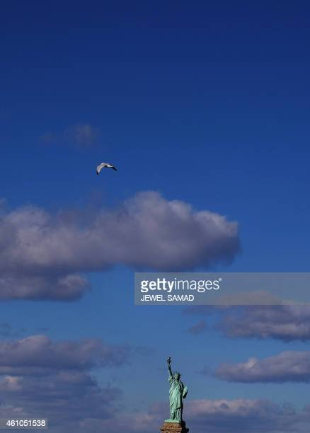 The Statue of Liberty is pictured from a passenger ferry in New York on January 5 2015The Statue of Liberty on Liberty Island in New York Harbor...