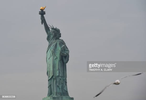 The Statue of Liberty is seen after the reopening January 22 2018 in New York New York State will pay $65000 a day out of its tourism budget to keep...