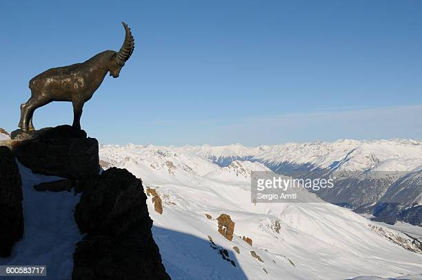 The steinbock statue on Piz Nair