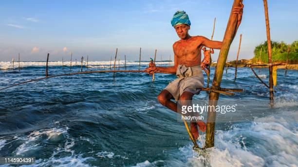 スティルト、スリランカ、アジアの漁師 - スリランカ ストックフォトと画像