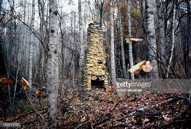 The stone chimney is all that remains of a 19th century log cabin in the Appalachian Mountains near Abingdon Virginia 5104602RA_Appalachia06jpg