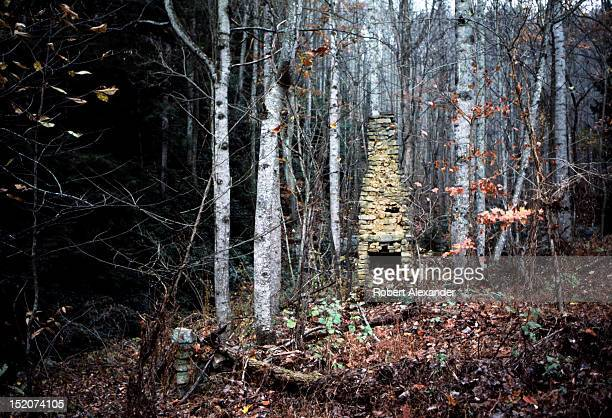 The stone chimney is all that remains of a 19th century log cabin in the Appalachian Mountains near Abingdon Virginia 5104602RA_Appalachia05jpg