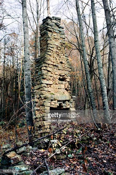 The stone chimney is all that remains of a 19th century log cabin in the Appalachian Mountains near Abingdon Virginia 5104602RA_Appalachia08jpg