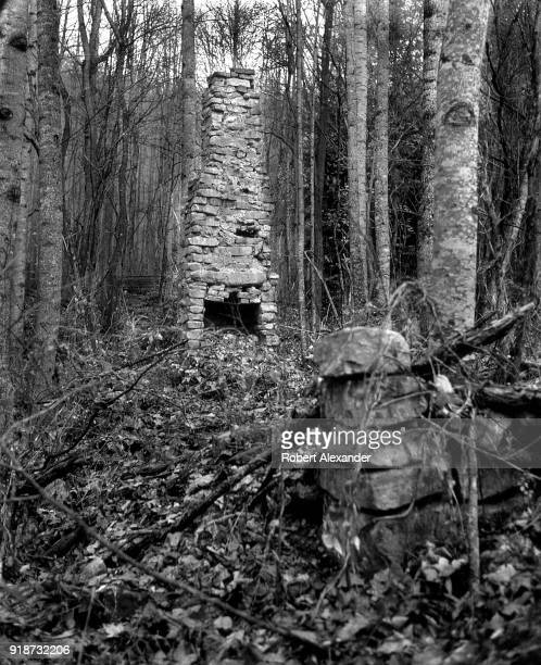 The stone chimney is all that remains of a 19th century log cabin that once stood in the Appalachian Mountains near AbingdonVirginia