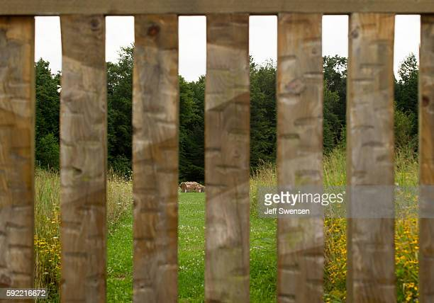 The stone marking the crash site through the fence at the Flight 93 National Memorial in Shanksville Pennsylvania on August 19 2016 American Airlines...