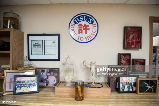 The storefront at Hsu's Ginseng Enterprise in Wausau Wisconsin displays record breaking sizes of ginseng as well as memorable photos and awards...