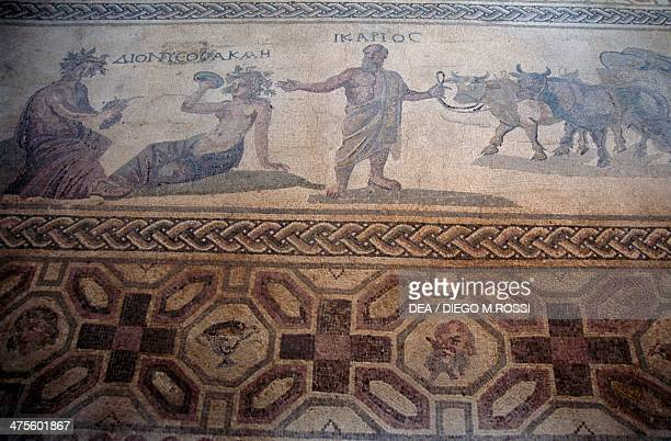 The story of Icarius, detail from a mosaic floor in the House of Dionysos, Paphos Archaeological Park , Cyprus. Roman civilisation, 2nd-4th century...
