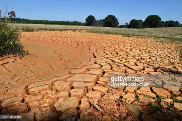 The stream Le Preau a dried up tributary of the river la Sarthe is seen in Louplande northwestern France on August 22 as a result of a heatwave which...