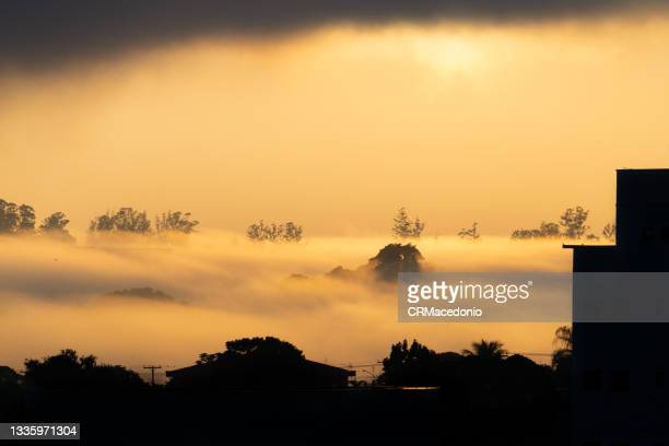 the strong mist covers part of the city on this beautiful winter morning. - crmacedonio stock pictures, royalty-free photos & images
