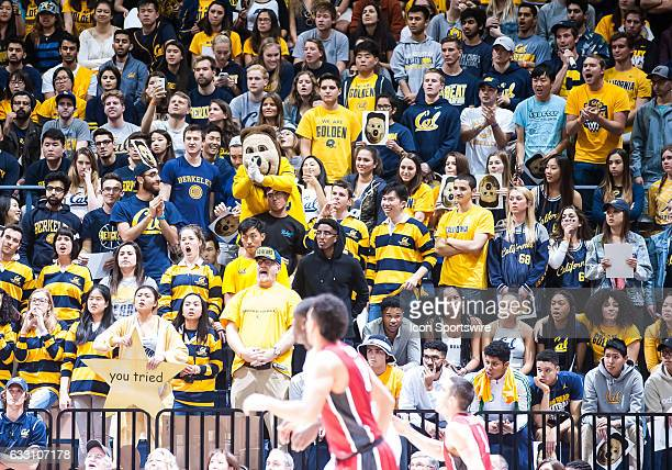 The Student section cheers on their team as Cal won 6655 during the regular season game between California Golden Bears verses Stanford Cardinal on...