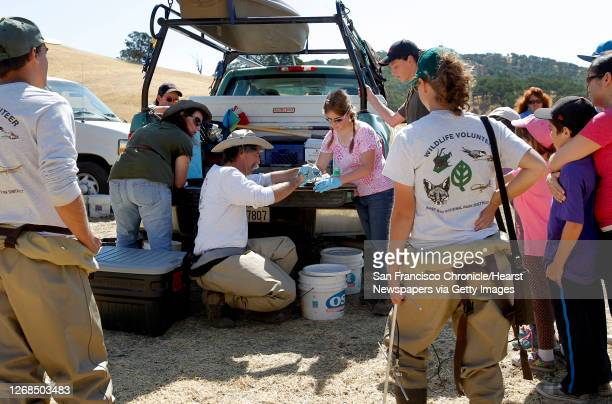 The study team, biologists, interns and volunteers gather data from the turtles, on Wednesday July 24 in Clayton, Calif. Wildlife Biologist David...