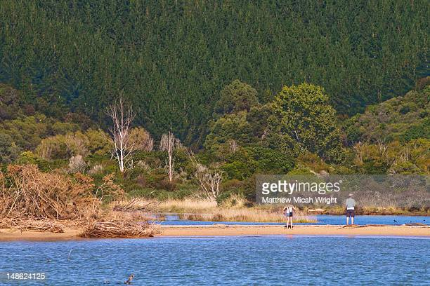 The stunning coastline of the Abel Tasman National Park as seen from a catamaran. A couple walks down the beach exploring at the entrance to the park
