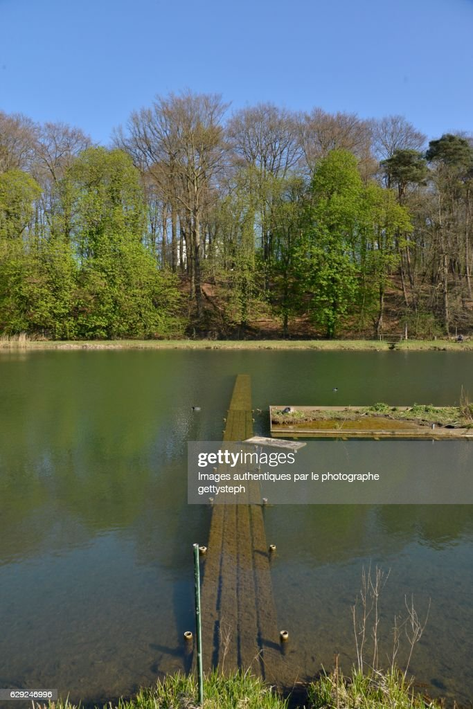The submerged pontoon in the pond : Stock Photo