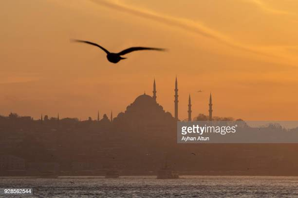 The Suleymaniye Mosque at sunset,Fatih district of Istanbul,Turkey