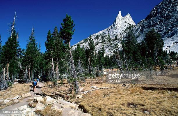 the summit pinnacle of cathedral peak (10,940 feet) seen from a backcountry hiking trail- yosemite national park, california - pinnacle peak stock-fotos und bilder