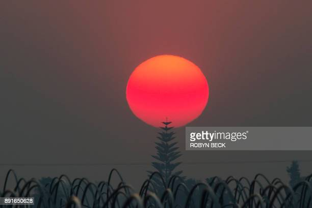 The sun a deep red/orange from the smoke from the Thomas Fire sets over an agricultural field in Santa Paula California December 12 2017 The Thomas...