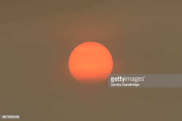 the sun colour in the uk was due to a weather phenomenon, saharan dust, blown in by ex-hurricane ophelia and also from debris, caused by fires in portugal and spain. - light natural phenomenon stock photos and pictures