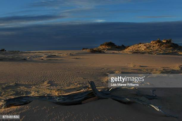 The sun rises across the dunes of Lake Mungo in the Willandra region on November 17 2017 in Australia The ancestors of Australia's oldest human the...