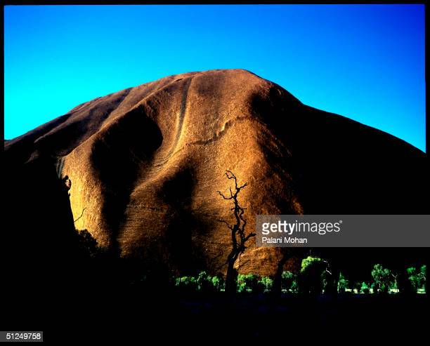 the sun rises at Uluru the sacred home for thousands of years of the Yankunytjatjara and Pitjantjatjara people in the central Australian desert...