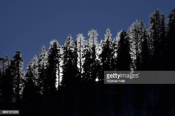 The sun rises behind pine trees during the FIS Alpine World Cup Women's Giant Slalom on January 23 2018 in Kronplatz / Plan de Corones Italian Alps /...