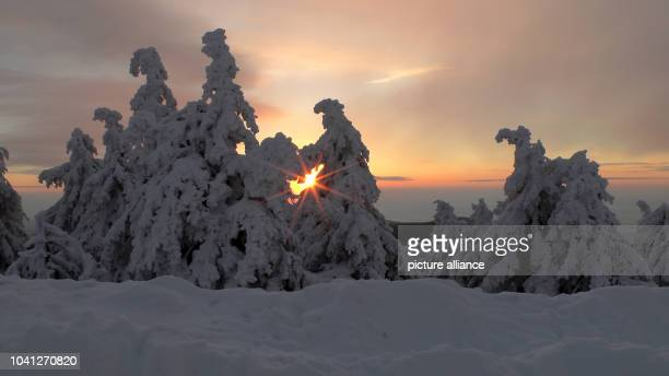 The sun rises behind the Brocken in the snowy HarzMountains near SchierkeGermany 15February 2013 It is an unsual moment of foglessness Photo...