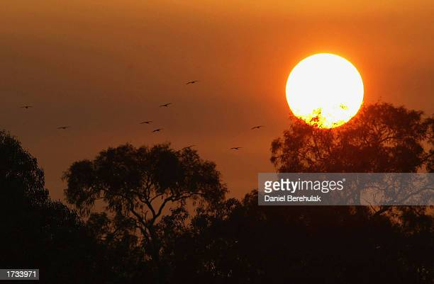 The sun rises over Canberra on January 20 2003 in Canberra Australia Four people were killed and 368 homes destroyed when the fires being fought on...