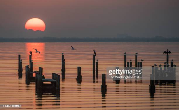 The sun rises over Cape Canaveral and the Indian River at the Rotary Riverfront Park along highway 1 in Titusville. A look at the Space Coast in...
