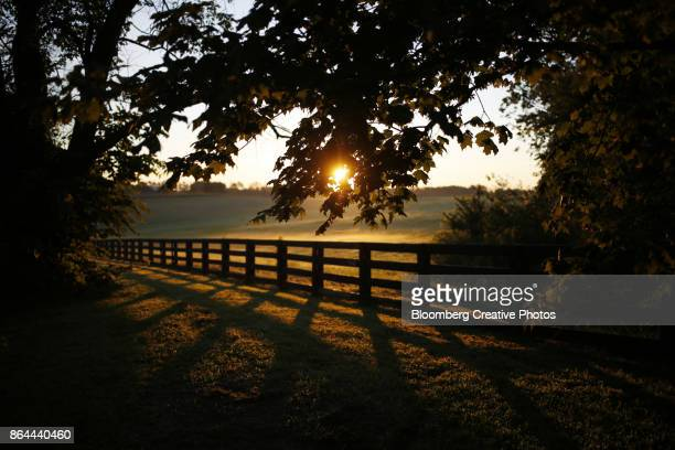 The sun rises over farmland in Kentucky