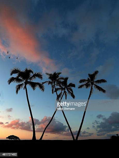 The sun rises over the 16th green prior to the final round of the Sony Open at Waialae Country Club on January 18, 2015 in Honolulu, Hawaii.