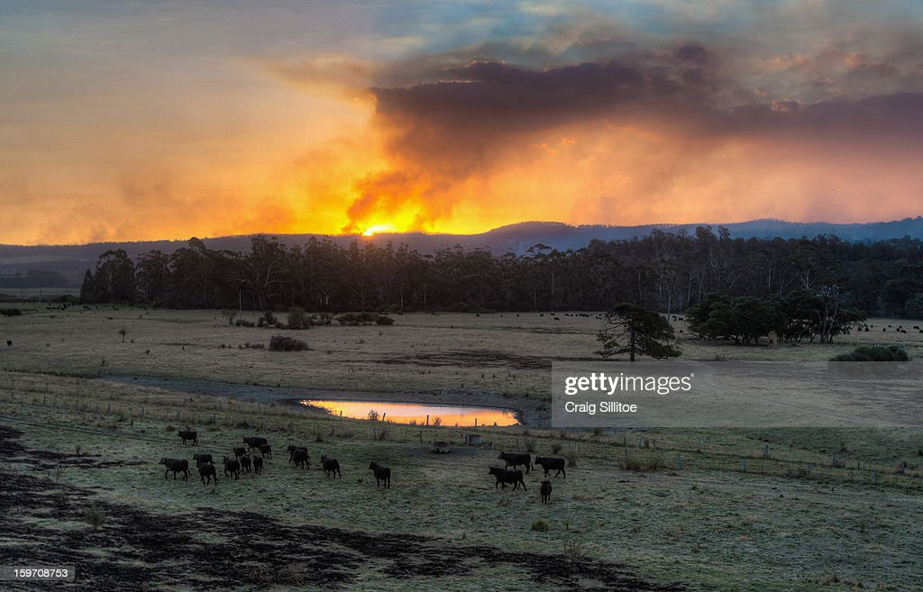 The sun sets as smoke rises near the town of Seaton on January 19, 2013 in Australia. Bushfires in Victoria have claimed one life and destroyed several houses as record heat continues to create extreme fire conditions throughout Australia.