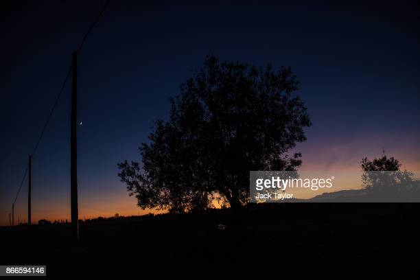 The sun sets behind an Olive Grove near the Catalan border town of El Castell on October 23 2017 in El Castell Spain Catalonia is one of 17...