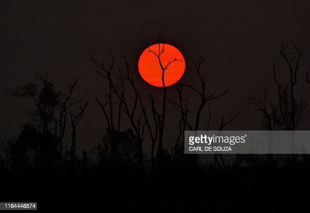 TOPSHOT The sun sets behind burnt trees of the Amazon rainforest south of Porto Velho on August 27 2019 Brazil will accept foreign aid to help fight...