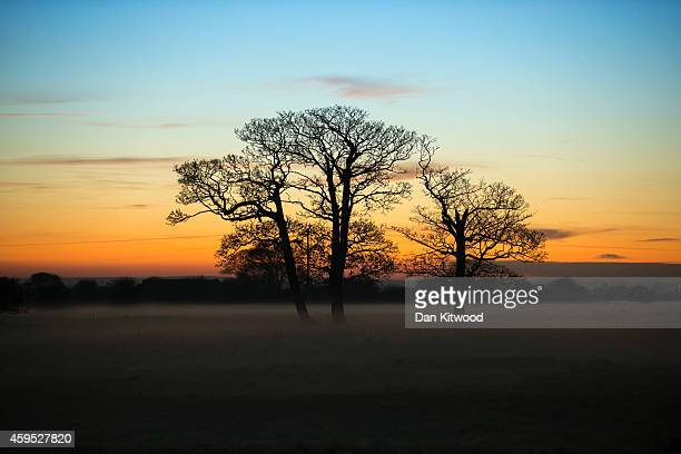 The sun sets behind trees in a field enshrouded in mist on November 24 2014 in Boston England