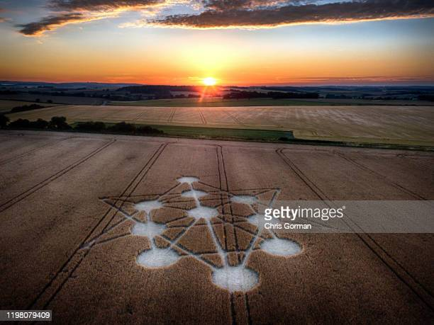 The sun sets on a crop circle at Target Wood in Dorset on July 5, 2019 near Blandford Forum, United Kingdom. The formation, which depicts the Tree of...